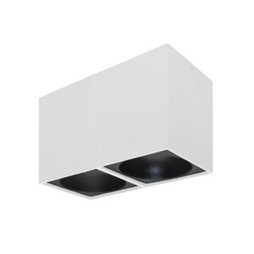Rettangolare stropna lampa 2x130 GU10 2x50W max. IP20 - Bijelo/crno
