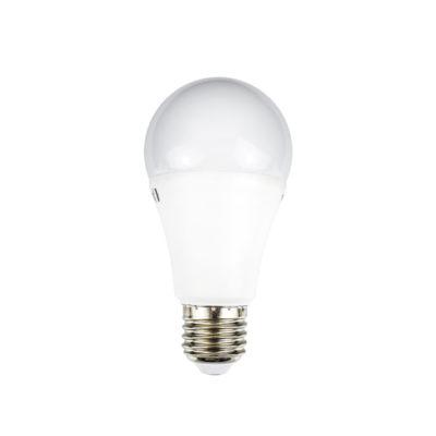 LED žarulja E27 12W