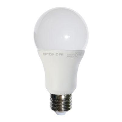 LED žarulja E27 A65 12W